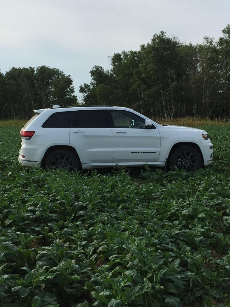 Showcase cover image for Fenaynay's 2019 Jeep Grand Cherokee Overland