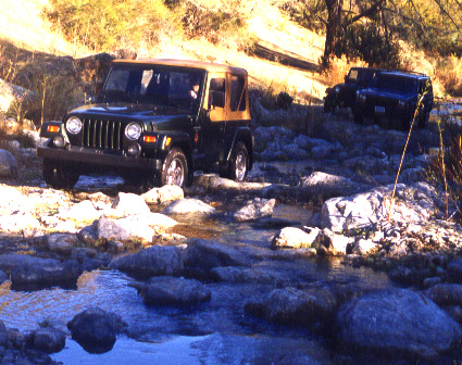 Jeeps in a creek